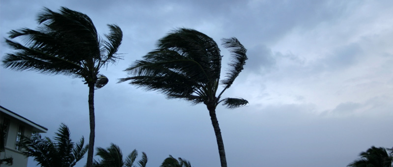 Helping you with Natural Disaster and Hurricane Property Damage Claims in Sarasota